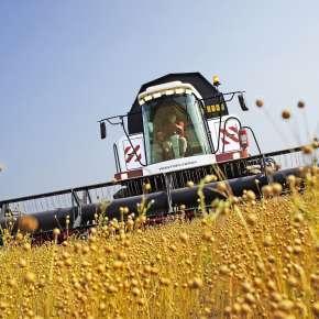 Rostselmash Acros 595 plus z ukosa na polu na www.korbanek.pl