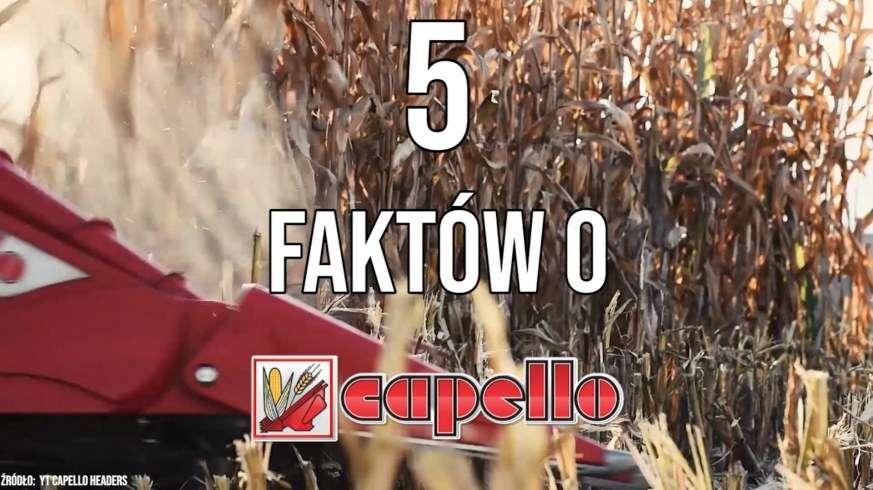 Tapeta z przystawką do kukurydzy capello podczas małych żniw 2019 5 faktów o opinia test od www.korbanek.pl