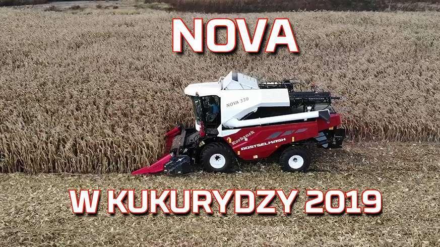 Tapeta z Kombajnem Rostselmash Nova 330 podczas żniw w kukurydzy na ziarno nowy nabytek od www.korbanek.pl