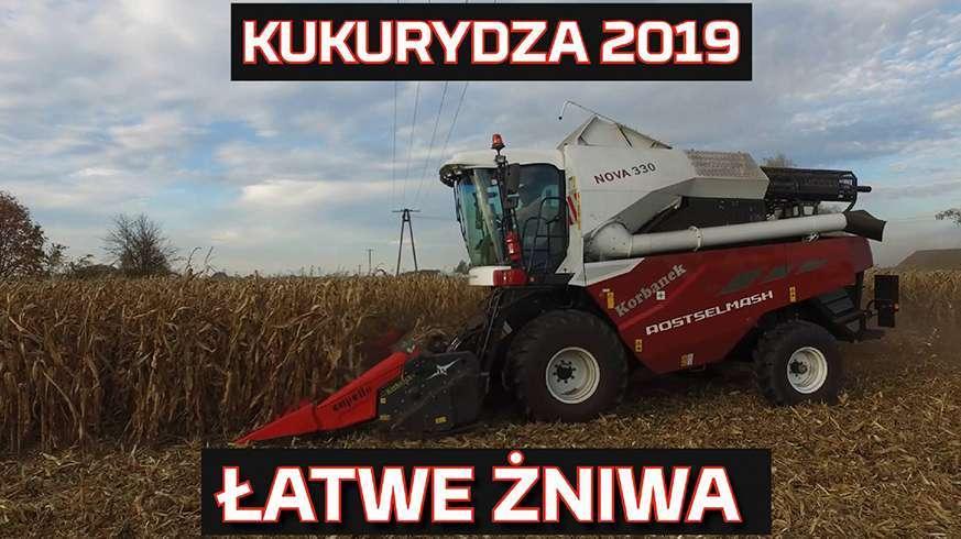 Tapeta z Kukurydza 2019 łatwe żniwa z kombajnem Rostselmash Nova 330 od Korbanek Nowy nabytek www.korbanek.pl