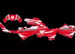 1000 XP Falcom Sportsman limitowana okleina kutvek kolor czerwony limited korbanek.pl