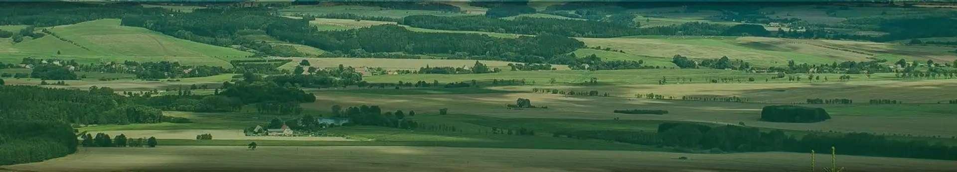 panoramiczne zdjęcie zielonego pofalowanego krajobrazu z oddali
