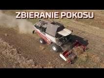 Embedded thumbnail for Żniwa kombajnem RSM 161 po pokosówce KSU 1 Rostselmash | Nowy nabytek