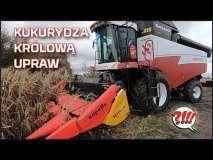 Embedded thumbnail for Czy KUKURYDZA to królowa upraw? Jaką przystawką do kukurydzy ją zbierać ? | Capello na kombajnie