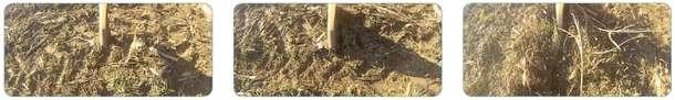 Kolejność wprowadzania sekcji do gleby