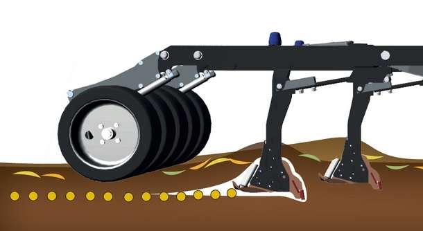 Siew bezpośredni do gleby