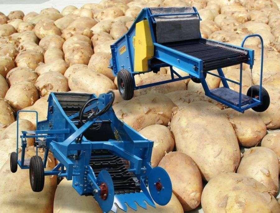 Kopaczka KRUKOWIAK MINI PYRUS Z664 do ziemniaków wczesnych od firmy korbanek