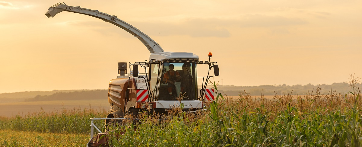 Sieczkarnia polowa Rostselmash RSM 1403 wyłądunek trawy  na przyczepę