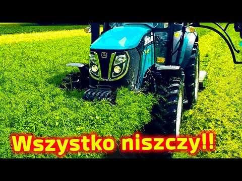 Embedded thumbnail for Likwiduje plantacje truskawek! Zniszczył ładny łubin Po co??