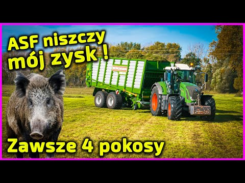 Embedded thumbnail for 200 ha, ja z żoną, 1 pracownik i ojciec 70 lat Bydło mleczne i trzoda Dokładam 60 gr/kg (ASF)