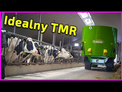Embedded thumbnail for Recepta na IDEALNY TMR  Jak zwiększyć produkcję mleka